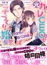 web_vbl210_cover-obi
